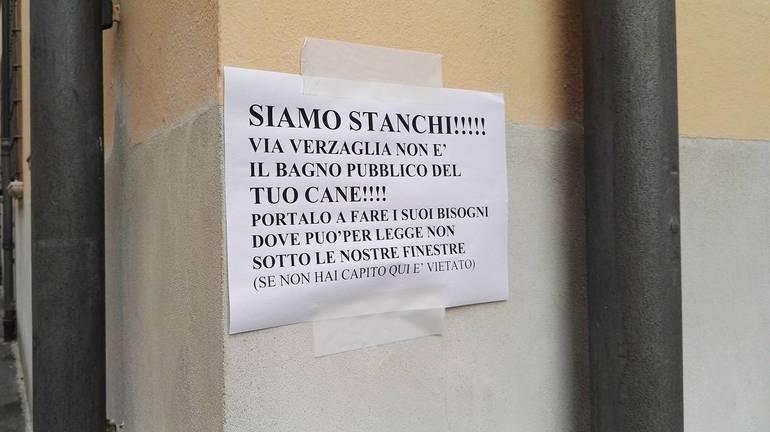 https://www.corrierecesenate.it/var/cesenate/storage/images/cesena/i-cittadini-di-via-verzaglia-non-ne-possono-piu-dei-cani-e-affiggono-un-cartello-molto-chiaro-siamo-stanchi/2004888-1-ita-IT/I-cittadini-di-via-Verzaglia-non-ne-possono-piu-dei-cani-e-affiggono-un-cartello-molto-chiaro-Siamo-stanchi_articleimage.jpg